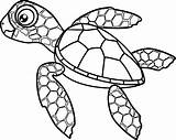 Turtle Coloring Sea Cute Cartoon Hatchling Vector Drawing Turtles Pages Clip Adults Illustrations Save Clipart Adult sketch template