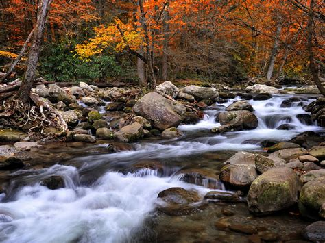 beautiful national parks  america great smoky mountains