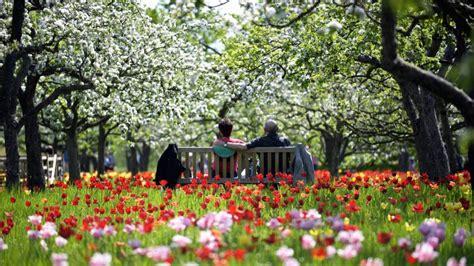 Britzer Garten Wm by Britzer Garten Bl 252 Ht Wieder In Voller Pracht Neuk 246 Lln