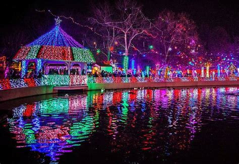 rhema light display family travel go