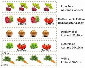 Gemüsegarten Anlegen Für Anfänger : gem segarten f r anf nger ~ Whattoseeinmadrid.com Haus und Dekorationen