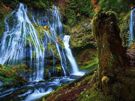 beautiful scenery panther creek falls washington usa