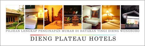 hotel dieng plateau wonosobo penginapan murah homestay
