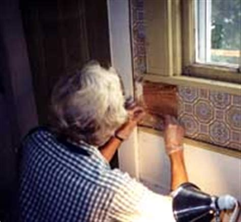 preservation   painting historic interiors