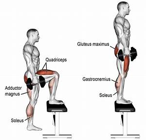 9 Bodyweight Leg Exercises To Be A Better Athlete