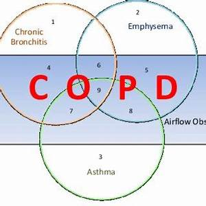 (PDF) Current Overview of COPD with Special Reference to ...