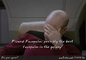 Picard Triple Facepalm | www.pixshark.com - Images ...