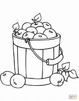 Coloring Apples Bucket Pages Fall Drawing Printable Paper sketch template