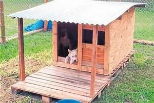 Hunde Sachen Kaufen : casa para perros recicladas buscar con google ideas recicladas pinterest ~ Watch28wear.com Haus und Dekorationen
