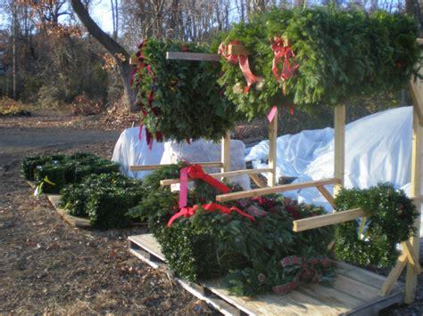 hidden pond tree farm where christmas grows all year long