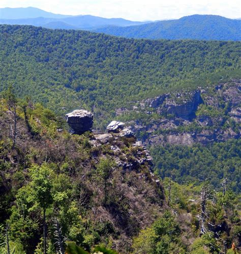 Hiking With Fat Bald White Guy Linville Gorge North