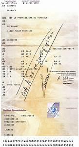 Combien De Temps Pour Refaire Une Carte Grise : carte grise gratuite ~ Maxctalentgroup.com Avis de Voitures