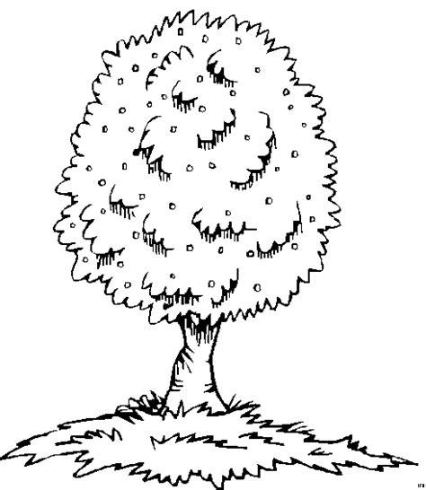 Schoener Baum Gras Ausmalbild & Malvorlage (Nordisch