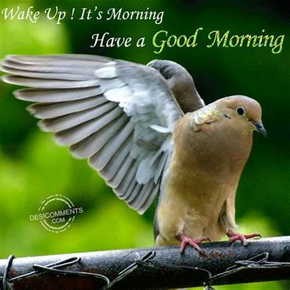 Morning Wake Kaur Desicomments Gagandeep Submitted