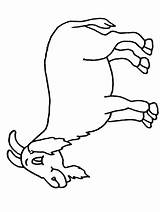 Goat Pages Coloring Colouring Printable Sheet Sheets Mountain Cliparts Cartoon Goat2 Activity Clipart Children Library Coloringpages101 Clip Popular Site sketch template