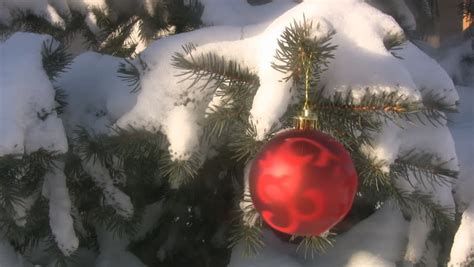 obnoxious christmas ornaments ornament hanging on a snow covered tree outdoors stock footage 291904