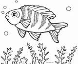 Fish Coloring Pages Fishing Cartoon Printable Saltwater Getcolorings Puffer Boy Flower Cool2bkids Fisherman Colorin Template Shape Colorings Getdrawings Ray sketch template