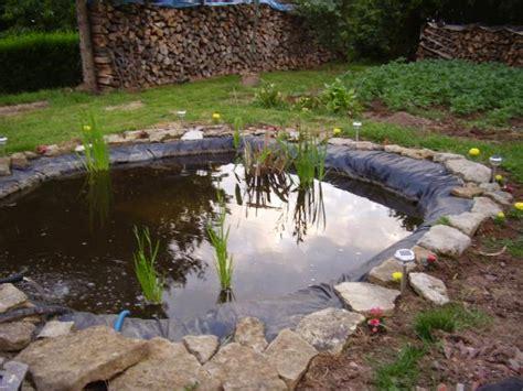 bassin pour les poissons le jour cr 233 ations de toutes sortes