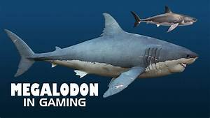 The gallery for --> Megalodon Shark Compared To Titanic