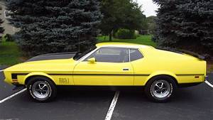 1973 Ford Mustang Mach 1 Fastback | F192 | Chicago 2016