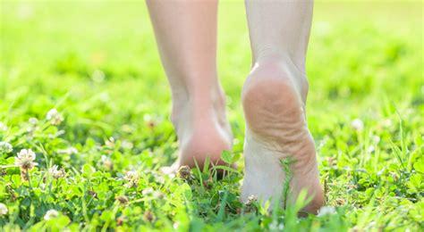 earthing  grounding    health
