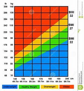 Body Mass Index Berechnen Frau : bmi stock illustration illustration of kilogram mass 15932619 ~ Themetempest.com Abrechnung