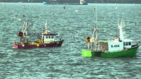 Find A Fishing Boat In Ireland by Fishing Boats Working Off Hook Head Co Wexford Ireland