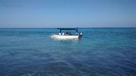 gulf grouper cabo pulmo movement patterns park mycteroperca residency jordani tracking within marine national coastal