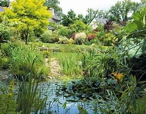 Plantes Vivaces Autour D Un Bassin : am nagement d 39 un bassin dans un jardin humide ~ Melissatoandfro.com Idées de Décoration