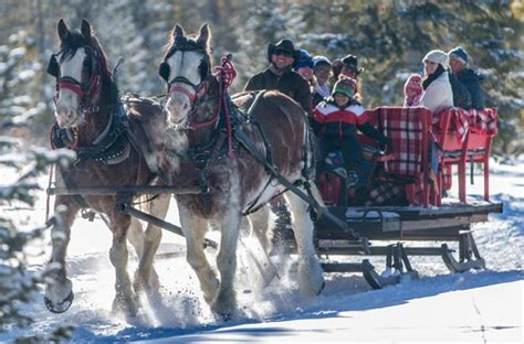 sleigh sombrero snow winter rides mountain ranch riding colorado horseback denver ride stables granby near trail onlyinyourstate tripadvisor