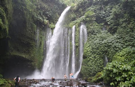 Tiu Kelep Waterfall Waterfall In Gunung Rinjani National