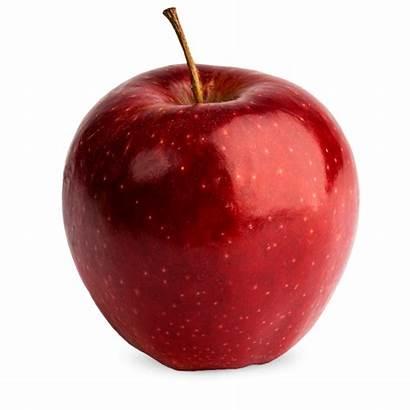 Prince Apple Fruit Fresh Orchard Farm Square
