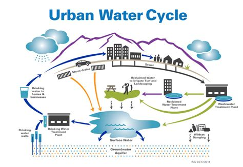 The Water Cycle Diagram Pdf by Your Water