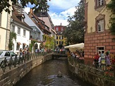 Freiburg and the Black Forest | The Traveling Times