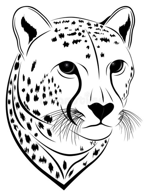 cheetah tattoo stock vector illustration  tattoo