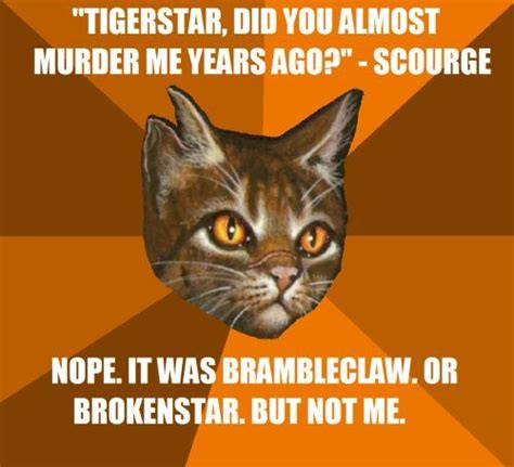 Funny Warrior Cat Memes : 25 Best Memes About Warrior Cats ...