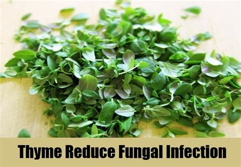 herbal remedies  fungal infection easy effective