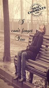 i can t forget you desicomments