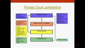 Understanding The United States Legal System