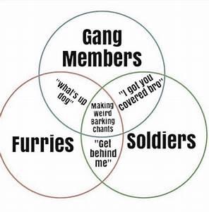 Memebase - Venn Diagrams - All Your Memes In Our Base - Funny Memes