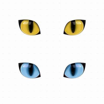 Eyes Cat Yellow Gato Felidae Eye Gatito