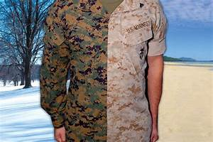 Resume For Army Rolled Sleeves To Make Return With Marines Military Com