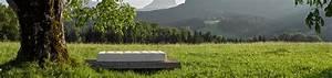 Grüne Erde Matratzen Test : serviceleistungen beim matratzen kauf gr ne erde ~ Lizthompson.info Haus und Dekorationen