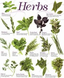 Herbal Malaysia