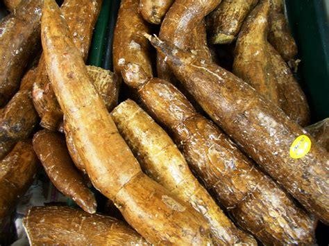 Bav's Kitchen Cassava Or Yuca