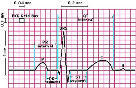 read  electrocardiograph ekg tutorial