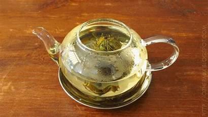 Tea Gifs Animated Giphy Warm Feel Toasty