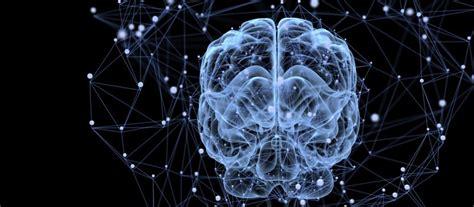 tips  effective study  cognitive psychology scu