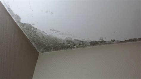 probleme humidité chambre humidité et moisissures au plafond photo de hotel