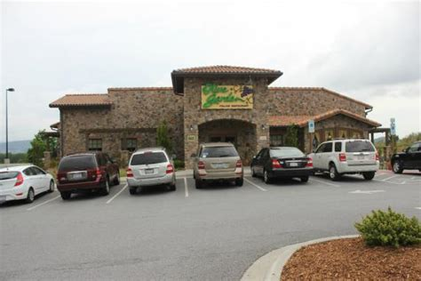 olive garden nc great food great price and fantastic service olive